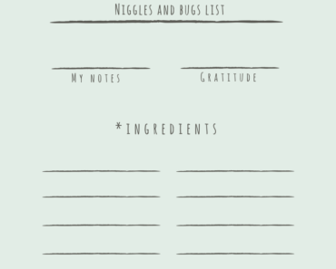 Niggles and bugs list