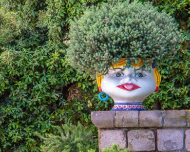 Plant pot with face by nick-fewings-752868-unsplash