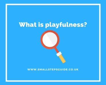 What is playfulness?