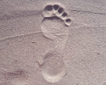 Pixabay picture of footprint-2624609